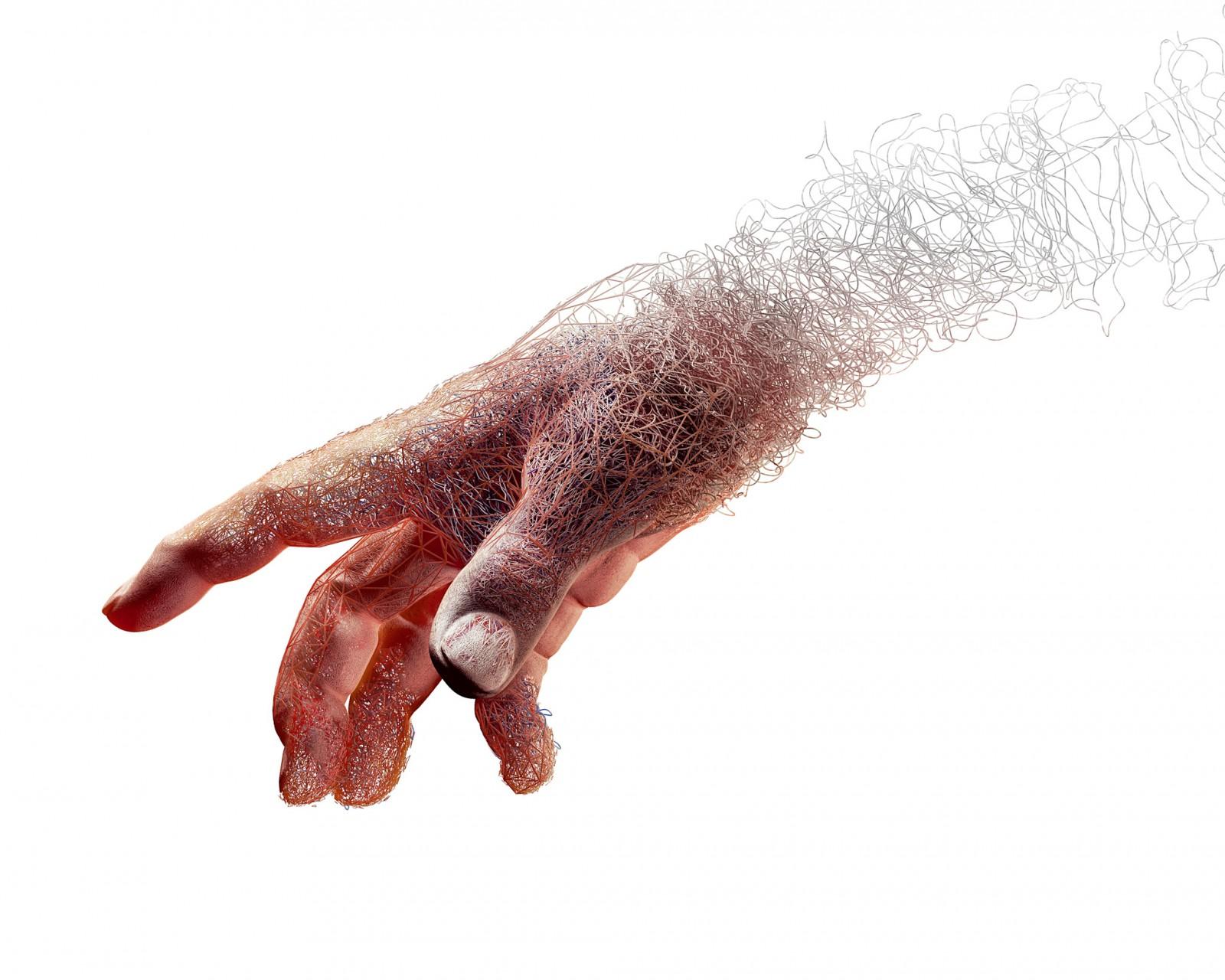 NS Hand